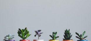 Objetos de decración handmade para el hogar